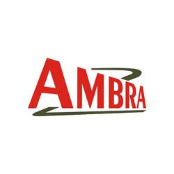 Ambra logo