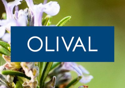 Olival